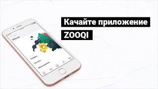 ZOOQI — скачивай и заказывай зоотовары с доставкой!