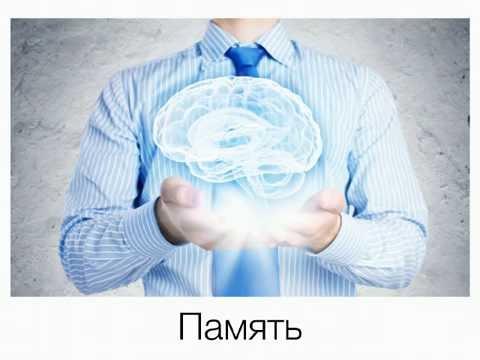 Запись вебинара Ицхака Пинтосевича «Научись Учиться»