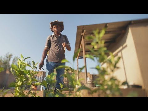 Faces of Africa - Lloyd's Payback to Nature