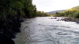 Поиски пропавших детей в реке Сочинка
