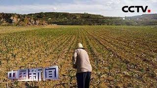 [中国新闻] 中国首个规范土地二级市场文件出台 | CCTV中文国际