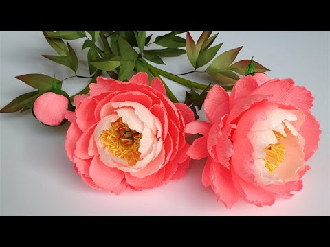 Abc tv how to make coral charm peony paper flower from crepe paper abctvcraft paperflower mightylinksfo
