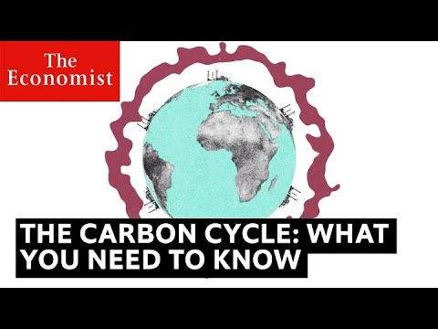 The carbon cycle is key to understanding climate change   The Economist