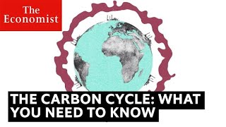 The carbon cycle is key to understanding climate change | The Economist