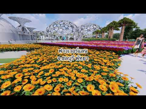 (Ep1)สถานที่ท่องเที่ยว ในไทยหน้าไปสุดๆ