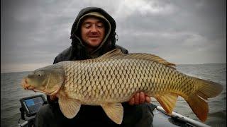 Огромные САЗАНЫ ЖАРЮ рыбу В ЛОДКЕ