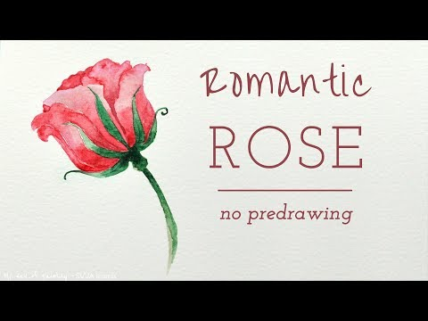 Romantic Rose in Watercolor - No Pre-Drawing