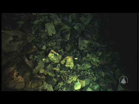 Images from the Arctic Seafloor