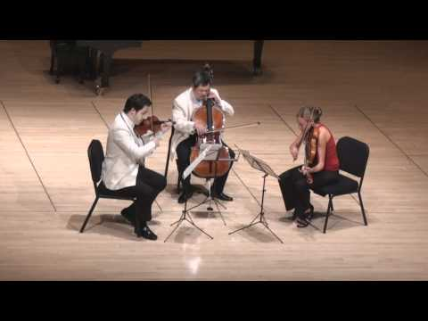 Beethoven String Trio in C minor - 1st mvt. | G. Schmidt, L. Francis, E. Kim