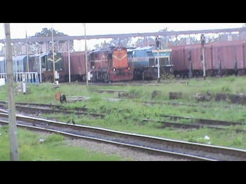 Grand arrival at New Jalpaiguri Junction, alias the mecca of NFR:: Sikkim Mahananda on- board
