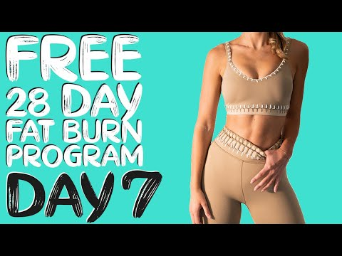 DAY 7 | FREE 28 DAY WORKOUT CHALLENGE | Arms & Abs Tone | Timer & Modifications Included