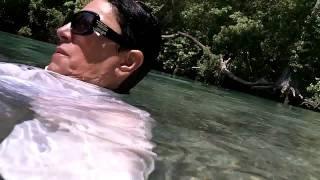 № 751 США Фантастика под водой Река Weeki Wachee River 20.04.2011