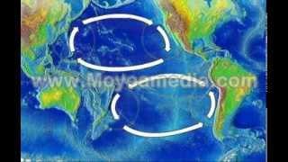 NOAA Ocean Currents