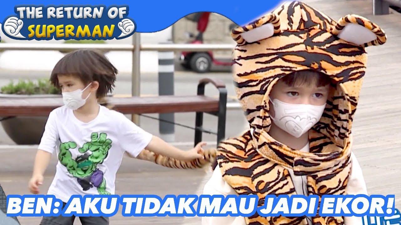 Download Ben: Aku Tidak Mau Jadi Ekor!  The Return of Superman  SUB INDO 211017 Siaran KBS WORLD TV 