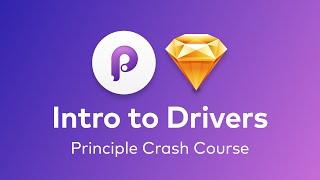 Principle - An Introduction to Drivers on Principle (Simple Slider)