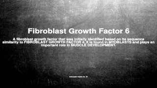 Medical vocabulary: What does Fibroblast Growth Factor 6 mean