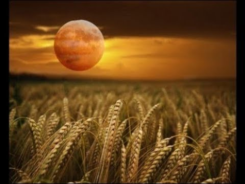 FULL HARVEST MOON RISING - Don't Miss the Most Beautiful Moon of The Year Hqdefault