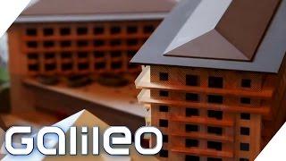 Teuerstes Luxushotel | Galileo