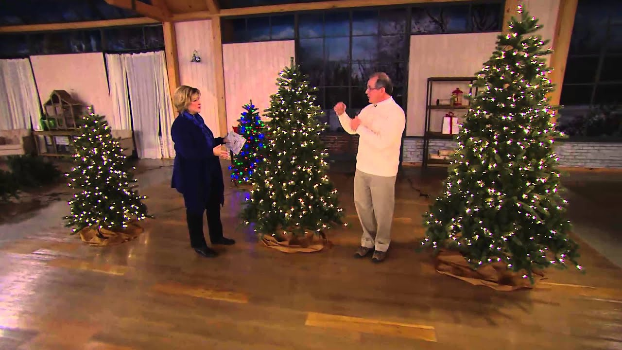 Balsam Hill 5' Northland Pine Christmas Tree W/ Easy Plug