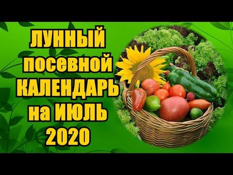 ЛУННЫЙ ПОСЕВНОЙ КАЛЕНДАРЬ на ИЮЛЬ 2020 года | астрология | огородник | календарь | посевной | садовод | лунный | сеять | семян | посев | когда