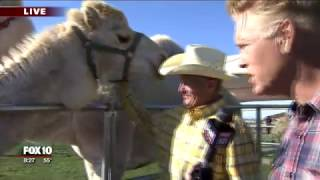 Cory checks out camels, ostriches and zebras racing