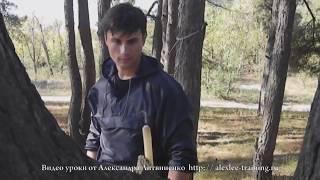 Техника эффективных ударов руками. Александр Литвиненко