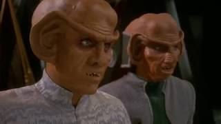 Quark Has Many Friends