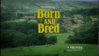 Born and Bred: Buried Treasure