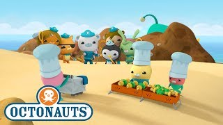 Octonauts - Seaweed Snack Station | Ocean Adventures | Cartoons for Kids | Underwater Sea Education
