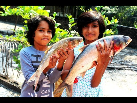 Kids picnic fish curry recipe  Delicious village food big fish curry
