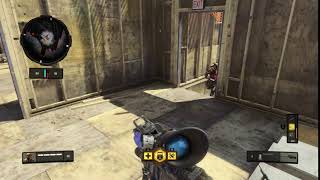 Call of Duty®: Black Ops 4_20181128205836