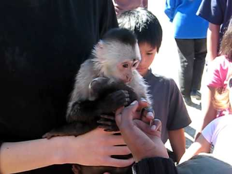 Roos N More Zoo, Moapa, NV