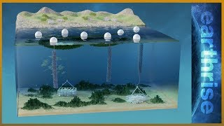 🌏 Farming underwater: 3D solutions for land and sea | Earthrise thumbnail