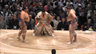琴奨菊 vs 栃ノ心の取組。 2016大相撲春場所3日目。