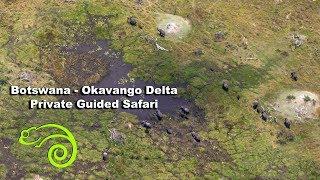 Botswana - Okavango Delta Private Guided Safari