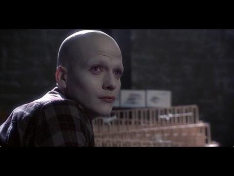Download مظهر الشخص لا يحدد شخصيتـه الحقيقيــة👌 من فلم Powder 1995