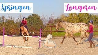 Marley springt 1M en Olympus voor het eerst LONGEREN? | felinehoi DAGVLOG #142