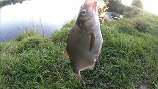Рыбалка на донки,подводная съёмка,рыбалка и отдых с семьёй,уловистый монтаж донки, уклейка на донку