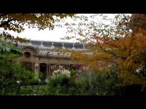 PARIS: Art and the Garden at Le Petit Palais