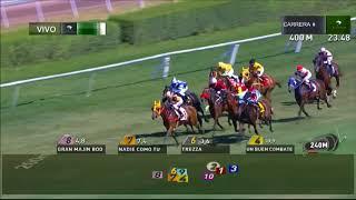 Vidéo de la course PMU PREMIO DIRSEO