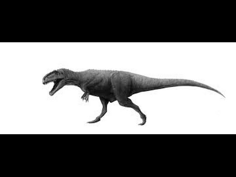 How to Draw Dinosaur full body drawing step by step - YouTube