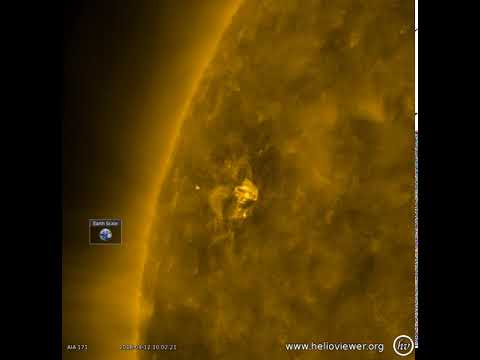 The Sun: Small but Dynamic Active Region
