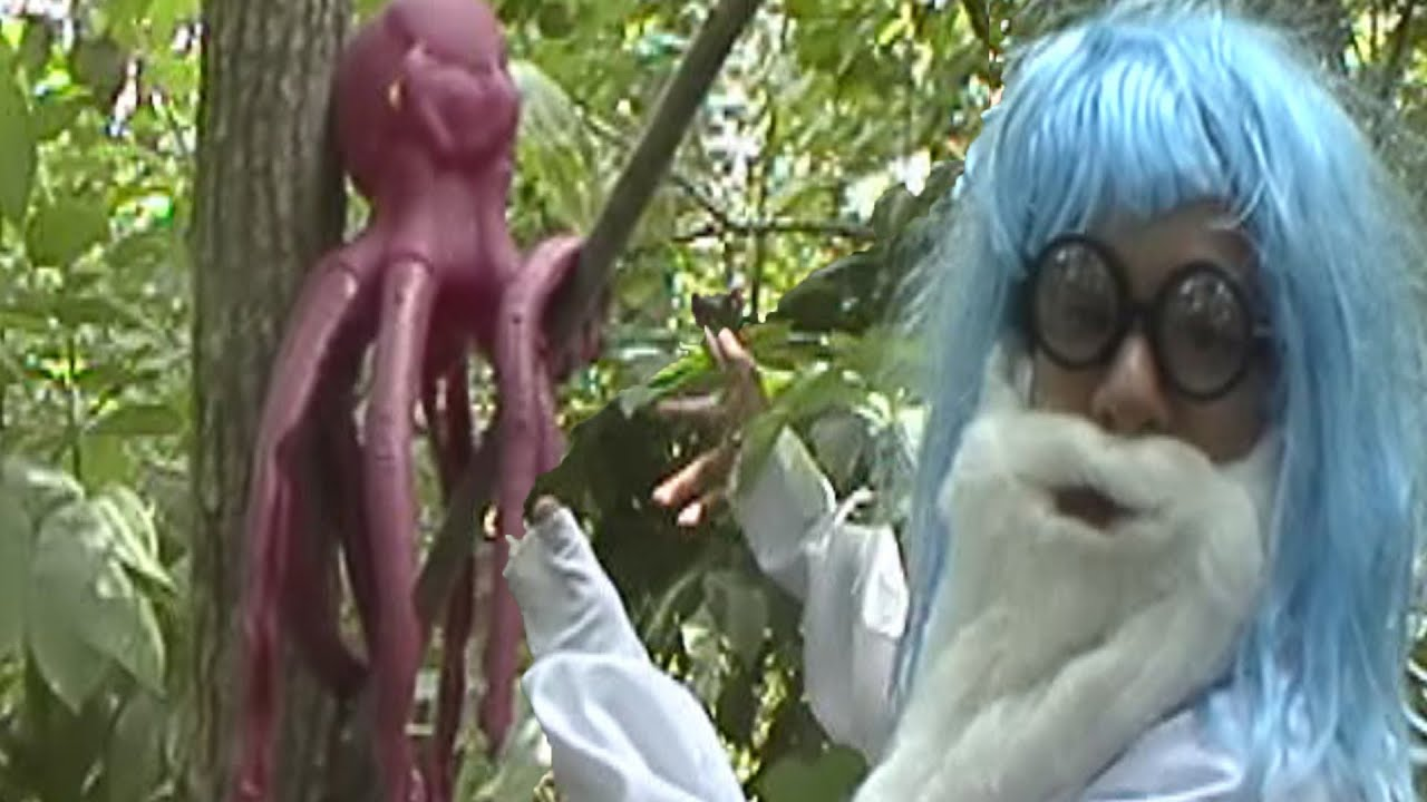 Tracking the Tree Octopus - YouTube