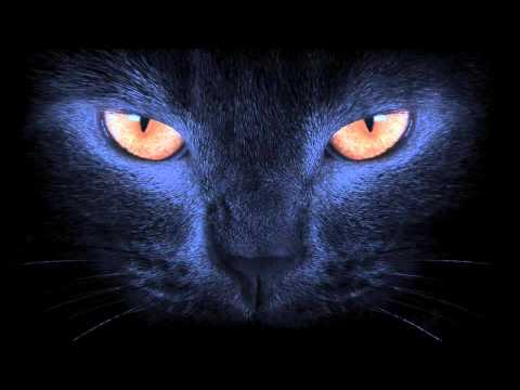COZZY D & Eric Volta feat. The French Edge : Le Chat Noir