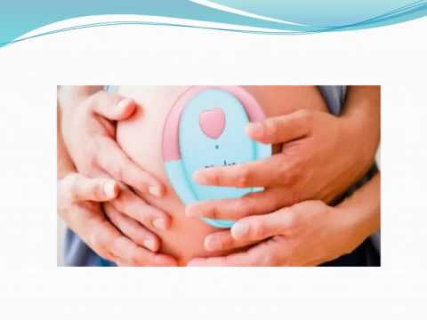 Baby Heartbeat Monitor   Bjingles