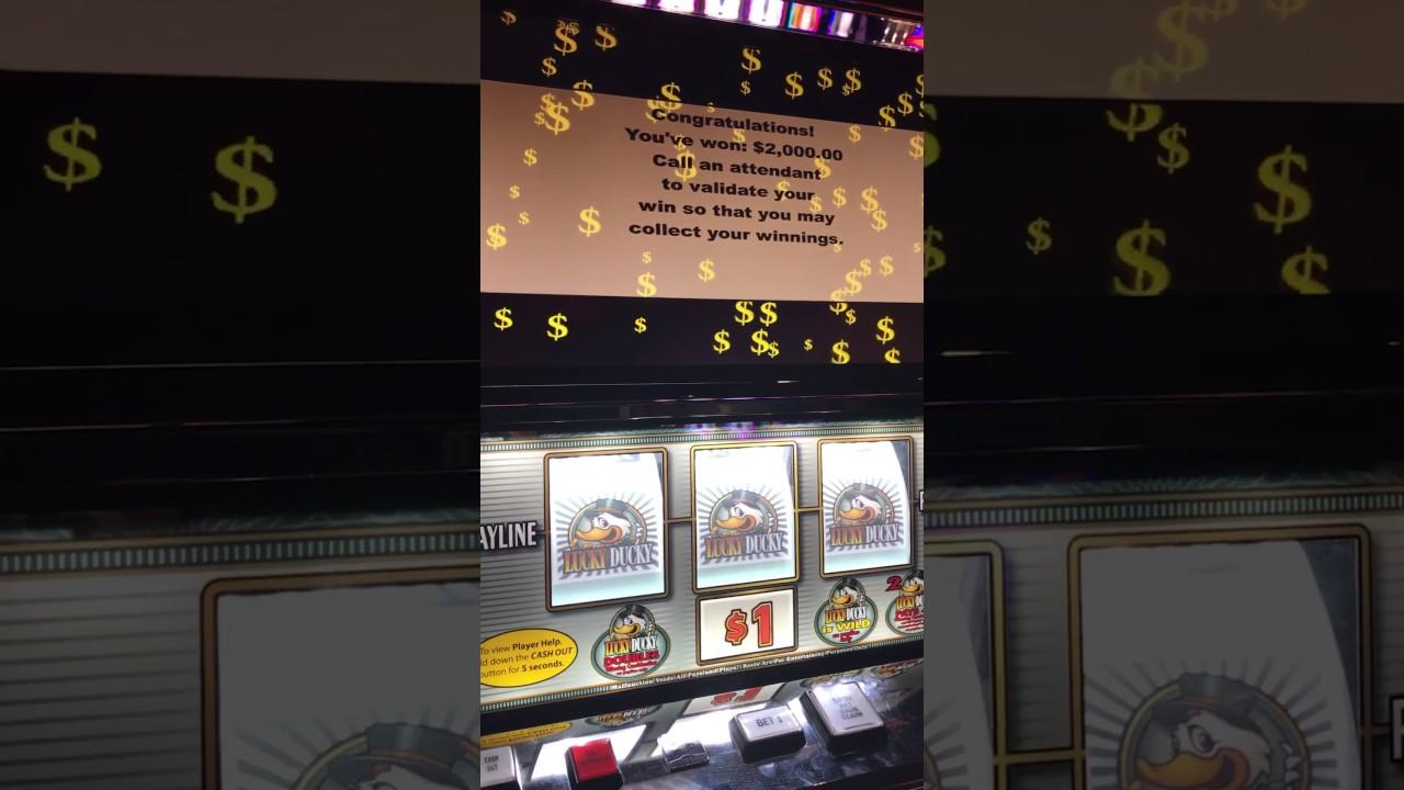 lucky ducky slot machine