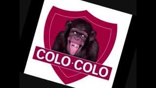 inprobisasion Colo Colo arvo canpion 2014 - GarRap Blanca