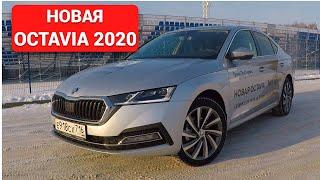О Новой Skoda Octavia 2020  без воды, только суть.