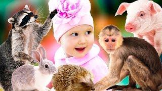 КОНТАКТНЫЙ ЗООПАРК. Учим звуки животных  Развлечение для детей Entertainment for children zoo