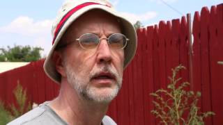 The Weeds In Our Own Backyards - Film Trailer